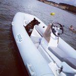 le jetboat avec le chien à bord